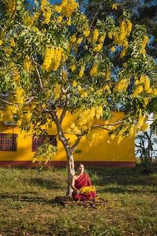Буддийский монах медитирует под деревом.