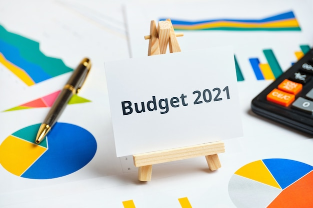 Budget of year concept on paper charts