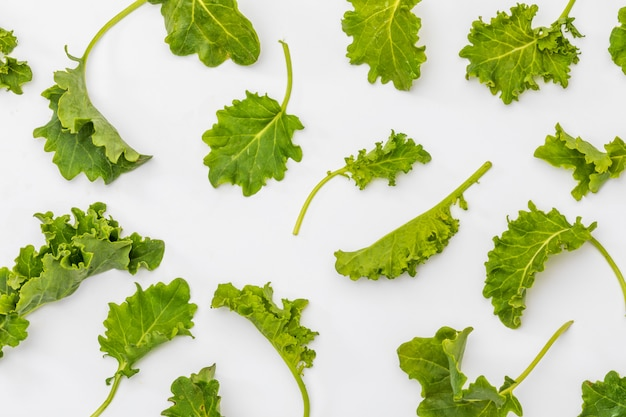 Buds of kale (cabbage). salad with a rustic and healthy aspect. isolated texture.