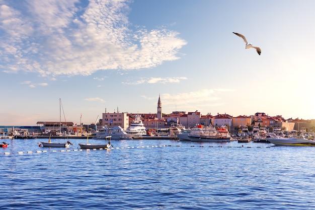 Будва марина с яхтами, солнечный день в черногории.