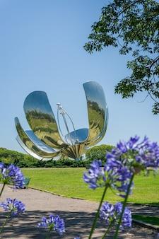 부에노스 아이레스 아르헨티나 플로랄리스 제네리카는 금속 꽃으로도 알려져 있습니다.