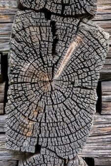 建物の詳細。年輪と亀裂のある古い松の木の幹の断面。
