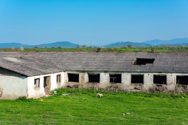 古い放棄された酪農場の建設