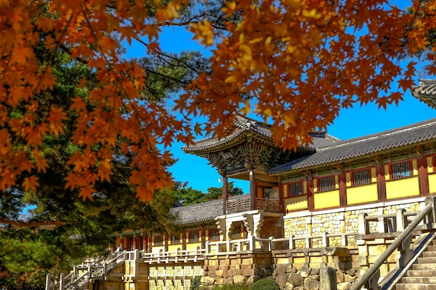 Bulguksa temple in autumn