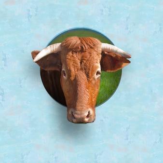 雄牛の頭部