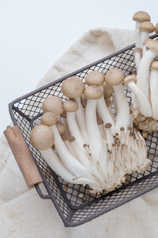 Buna shimeji mushroom in wire mesh basket
