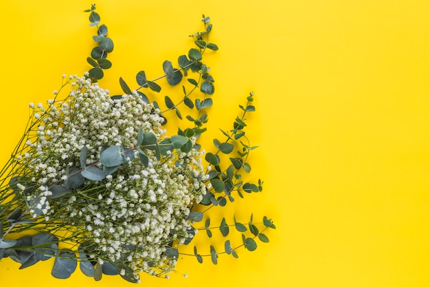 Bunch of baby's-breath flowers and leaves on yellow backdrop