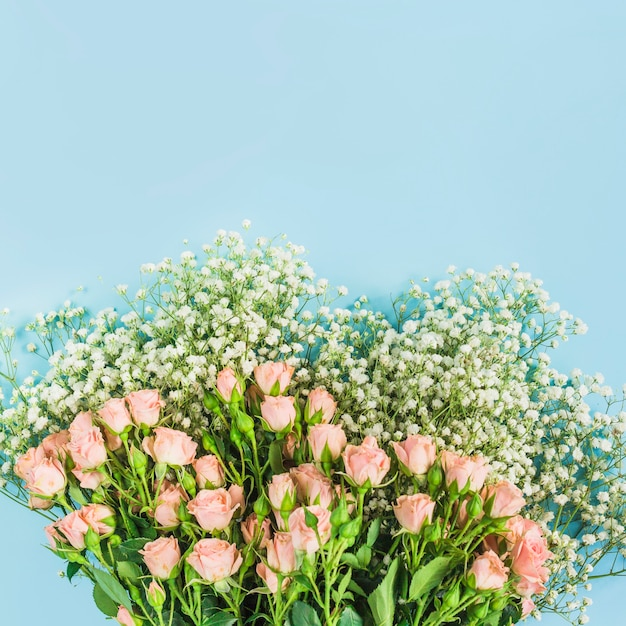 Bunch of baby's-breath flowers and pink roses on blue background