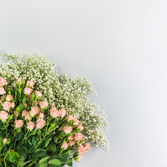 Bunch of baby's-breath flowers and pink roses on white background