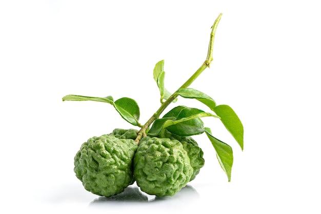 Bunch of bergamot fruit and leaf isolate on white background
