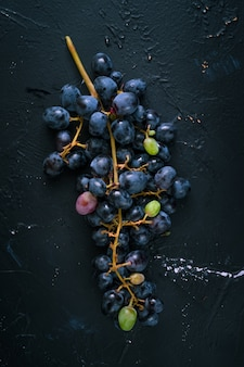 Bunch of blue grapes on dark blue background