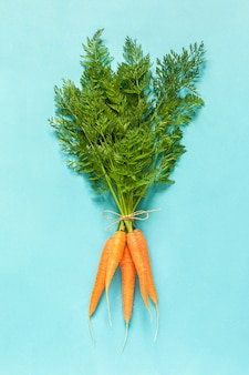 Bunch boundle of fresh orange juicy carrots with lush green tops tied with rope on blue background