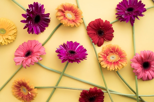 Bunch of bright gerberas