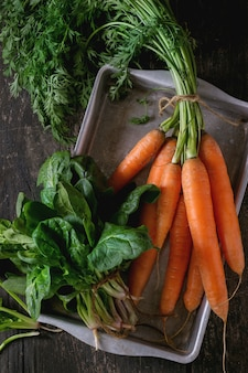 Bunch of carrot and spinach