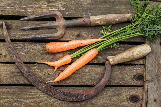 Bunch of carrots on old cutting board.
