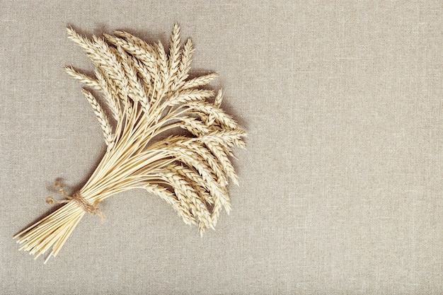 Bunch of compressed stems with ears golden wheat on fabric background rich harvest concept