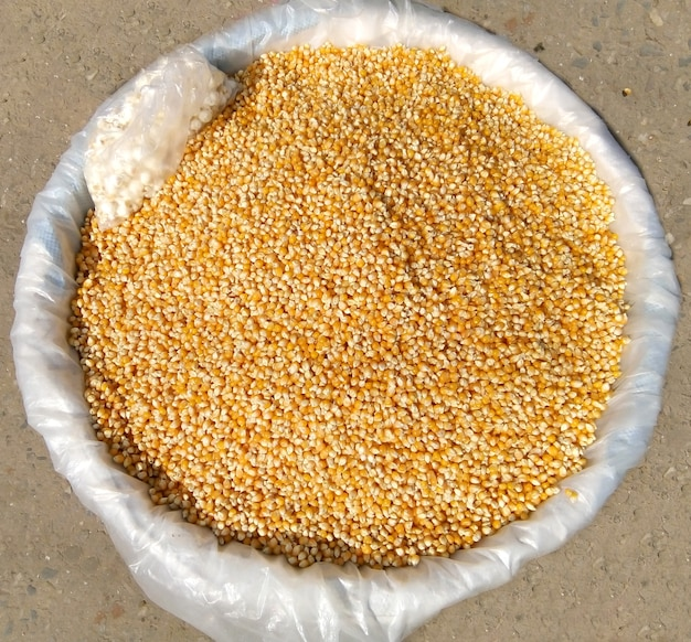 Bunch of corn grains on bamboo basket