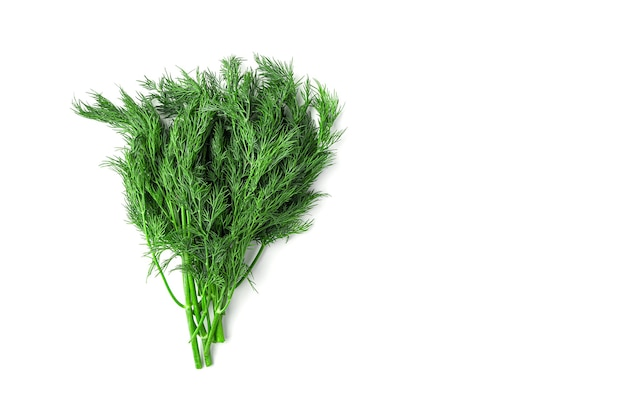 A bunch of dill on a white background. top view with copy space.
