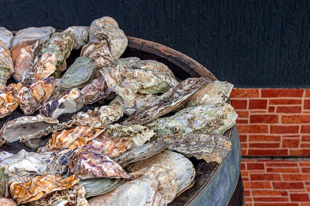 Bunch of empty  marine oyster shells on a barrel for decoration. textural background, copy space for text.