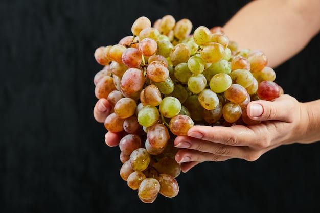 Grappolo d'uva fresca in mano su sfondo nero. foto di alta qualità