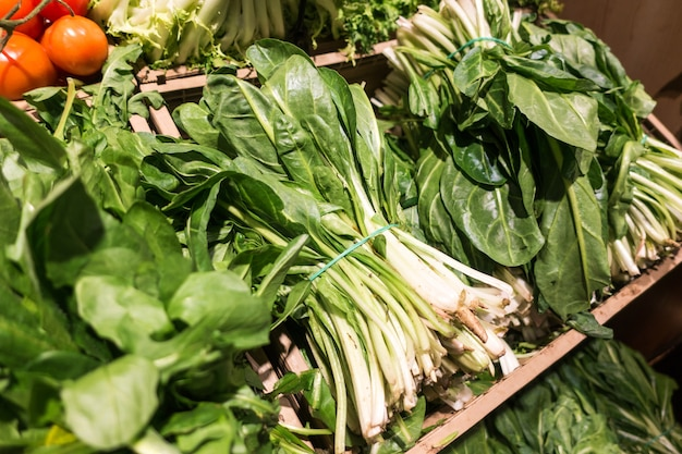 Bunch of fresh pak choi in a grocery store