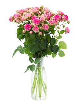 Bunch  of fresh pink roses in glass vase  isolated on white space