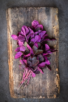 A bunch of fresh purple amaranth