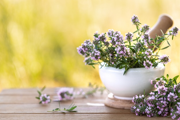 Bunch of fresh thyme on a wooden table against the of nature. copy space