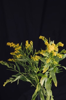 Bunch of fresh yellow flowers with green foliage in vase