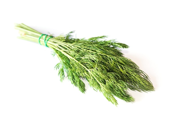 A bunch of green dill on a white surface