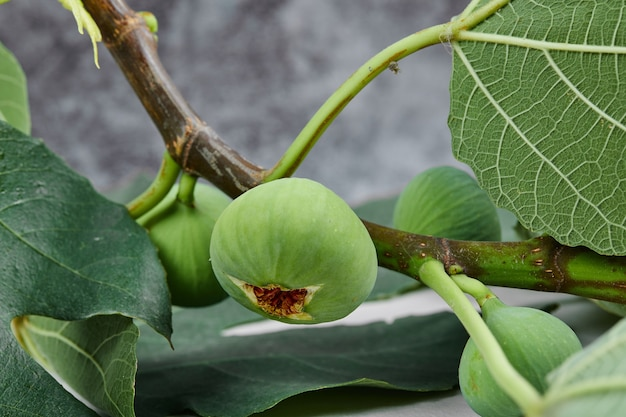 A bunch of green figs with leaves on marble.