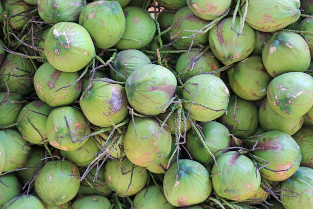 Bunch of green fresh coconuts background.