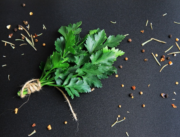 Bunch of green parsley around it spices and seasonings on a black background