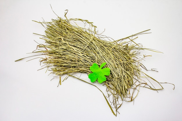 Bunch of hay isolated on white background, felt clover leaf