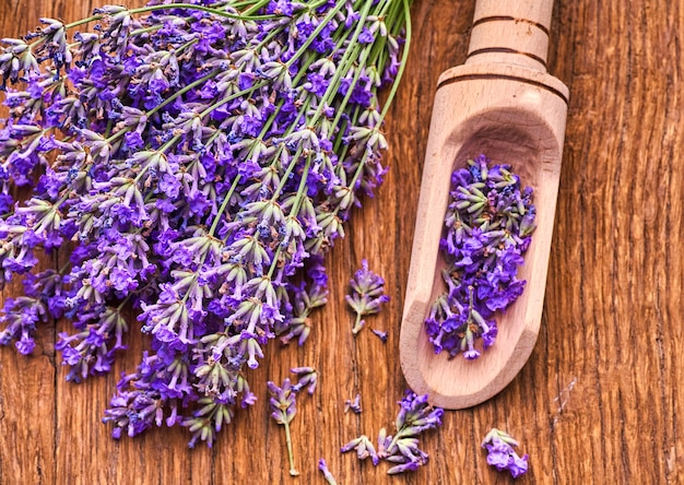 Bunch of lavender flowers on wooden board