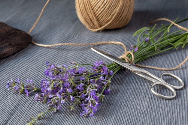 Bunch of lavender jute rope and scissors on gray background traditional medicine concept