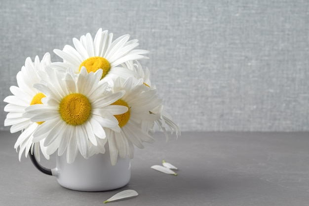 Bunch of lovely camomile flowers in mug on grey table space for your text