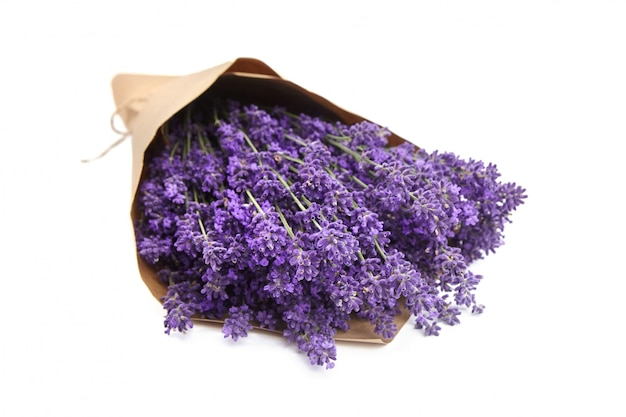 Bunch of natural lavender flowers wrapped in paper isolated on white