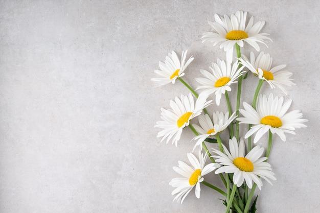 休日のお祝いの空きスペースのための灰色のテーブルフラットレイデイジーのカモミールの花の束