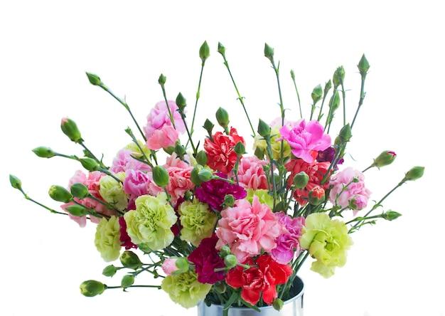カーネーションの花の束は、白いスペースに孤立してクローズアップ
