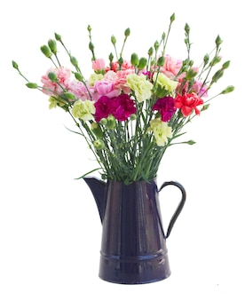 白いスペースで隔離の青い鍋にカーネーションの花の束