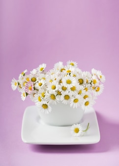 분홍색 배경에 흰색 꽃병에 데이지의 무리. 야생 꽃으로 장식.