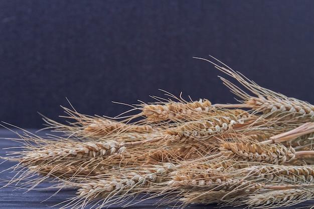 Букет из сухих колосков пшеницы на черном фоне