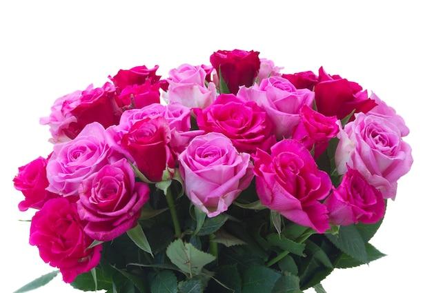 白い背景で隔離の新鮮なピンクとマゼンタのバラのクローズアップの束