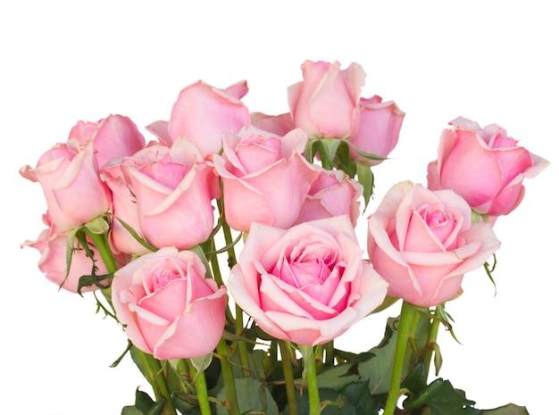 新鮮なピンクのバラの束は、白い背景で隔離のクローズアップ