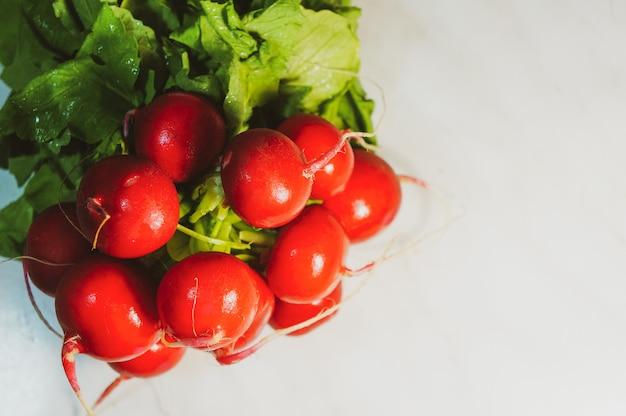 Букет из свежего редиса, здоровая пища, богатая витаминами, сезонные овощи