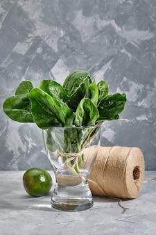 Букет из свежих листьев шпината в вазе с водой, серый фон. зеленые листья, богатые микроэлементами, копируют копья.