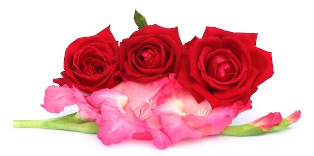 흰색 배경 위에 글라디올러스와 빨간 장미의 무리