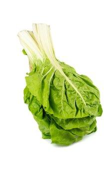 Букет из зеленого мангольда сгруппирован вместе, свежий вид с каплями воды, изолированные на белой поверхности. предпосылка овощей и космос экземпляра. еда