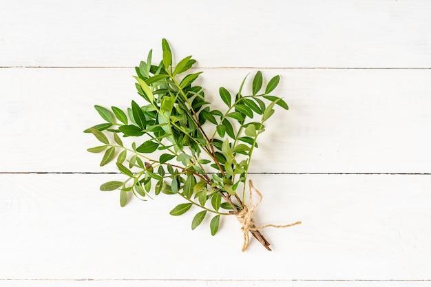 緑の葉の束は白い木製のテーブルに枝。自然保護の概念。